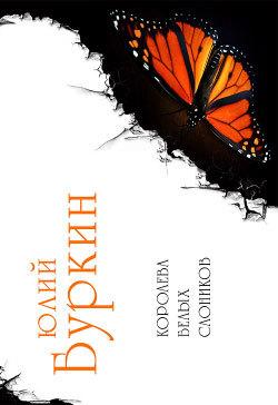 Обложка книги  - Вика в электрическом мире