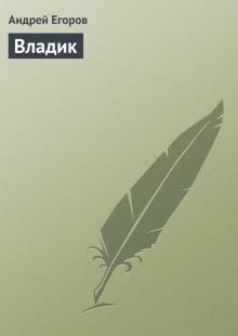 Обложка книги  - Владик