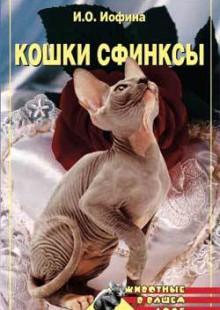 Обложка книги  - Кошки – сфинксы