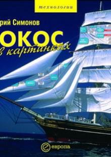 Обложка книги  - ЮКОС в картинках