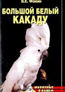 Обложка книги  - Большой белый какаду