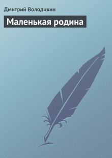 Обложка книги  - Маленькая родина