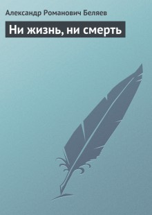 Обложка книги  - Ни жизнь, ни смерть
