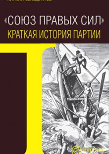 Обложка книги  - Союз Правых Сил. Краткая история партии
