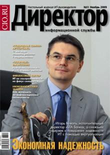 Обложка книги  - Директор информационной службы №11/2009
