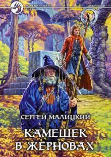 Обложка книги  - Камешек в жерновах