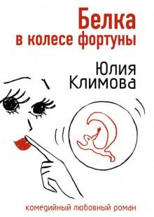 Обложка книги  - Белка в колесе фортуны