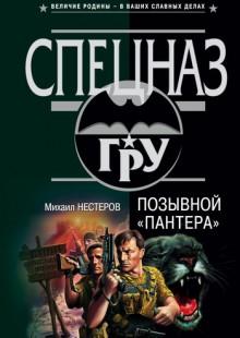 Обложка книги  - Позывной «Пантера»