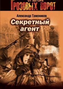 Обложка книги  - Секретный агент