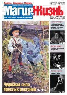 Обложка книги  - Магия и жизнь. Газета сибирской целительницы Натальи Степановой №6 (61) 2008