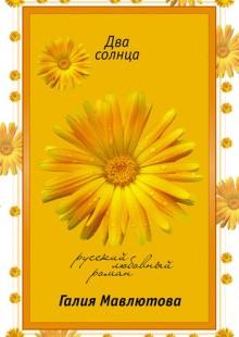 Обложка книги  - Два солнца