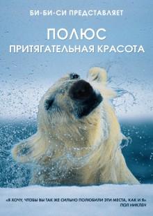 Обложка книги  - Полюс. Притягательная красота