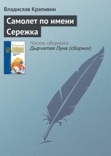 Обложка книги  - Самолет по имени Сережка