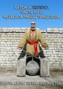 Обложка книги  - Мегасила мышц трицепсов