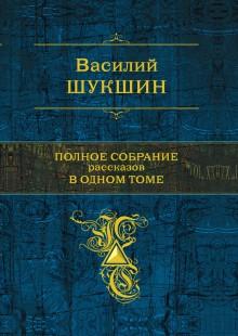 Обложка книги  - Залетный