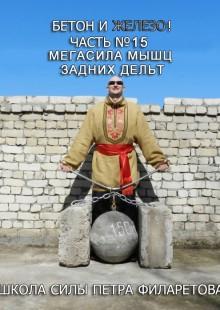 Обложка книги  - Мегасила мышц задних дельт