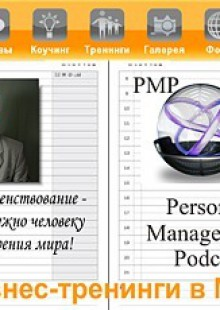 Обложка книги  - Миссия: что это такое и как этим пользоваться в России?