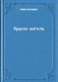 Обложка книги  - Крыло ангела