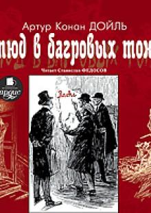 Обложка книги  - Этюд в багровых тонах