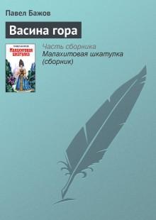Обложка книги  - Васина гора