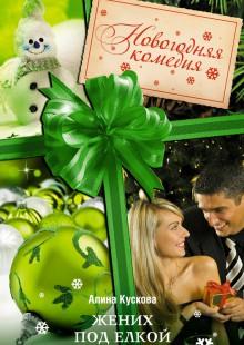 Обложка книги  - Жених под елкой