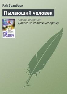 Обложка книги  - Пылающий человек