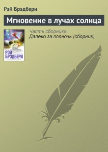 Обложка книги  - Мгновение в лучах солнца