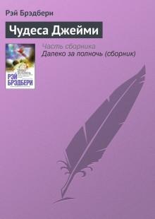 Обложка книги  - Чудеса Джейми