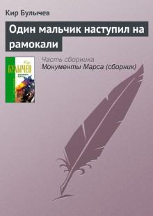 Обложка книги  - Один мальчик наступил на рамокали