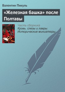 Обложка книги  - «Железная башка» после Полтавы