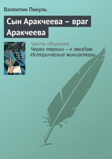 Обложка книги  - Сын Аракчеева – враг Аракчеева