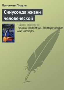 Обложка книги  - Синусоида жизни человеческой