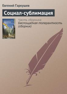 Обложка книги  - Социал-сублимация