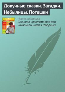 Обложка книги  - Докучные сказки. Загадки. Небылицы. Потешки