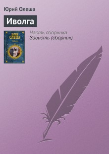 Обложка книги  - Иволга
