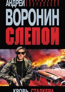 Обложка книги  - Слепой. Кровь сталкера