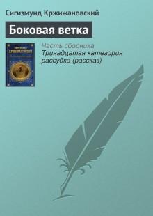Обложка книги  - Боковая ветка