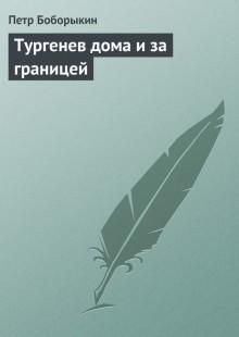 Обложка книги  - Тургенев дома и за границей