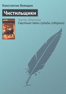 Обложка книги  - Чистильщики