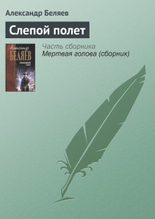 Обложка книги  - Слепой полет