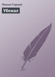 Обложка книги  - Убежал