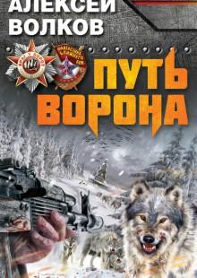 Обложка книги  - Путь Ворона