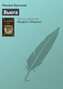Обложка книги  - Вьюга