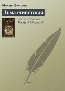 Обложка книги  - Тьма египетская