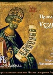 Обложка книги  - Псалтырь пророка и царя Давида на церковно-славянском языке