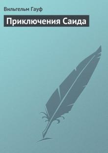 Обложка книги  - Приключения Саида