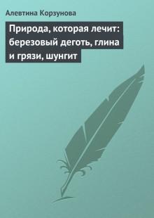Обложка книги  - Природа, которая лечит: березовый деготь, глина и грязи, шунгит