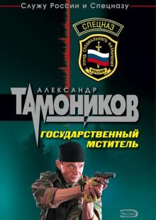 Обложка книги  - Государственный мститель