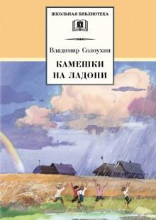 Обложка книги  - Камешки на ладони (сборник)