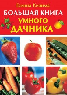 Обложка книги  - Большая книга умного дачника